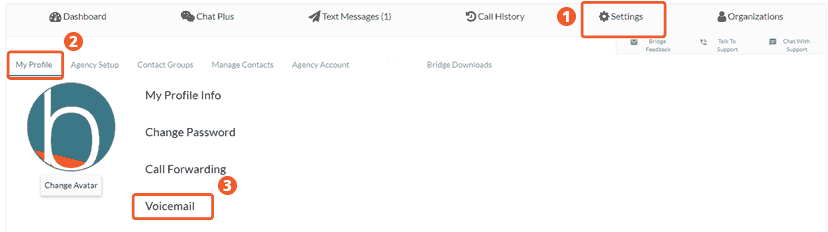 Settings For Voicemail Setup In Bridge Phone System